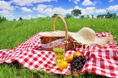The joy of picnics